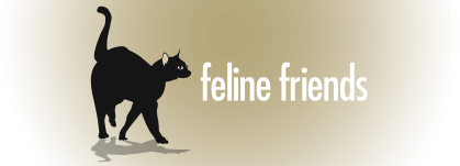 <br /> <b>Notice</b>:  Undefined variable: show in <b>/home/storage/910/3314910/user/htdocs/wp-content/themes/felinefriends/header.php</b> on line <b>19</b><br /> Feline Friends